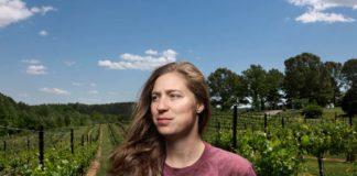 overmountain vineyards
